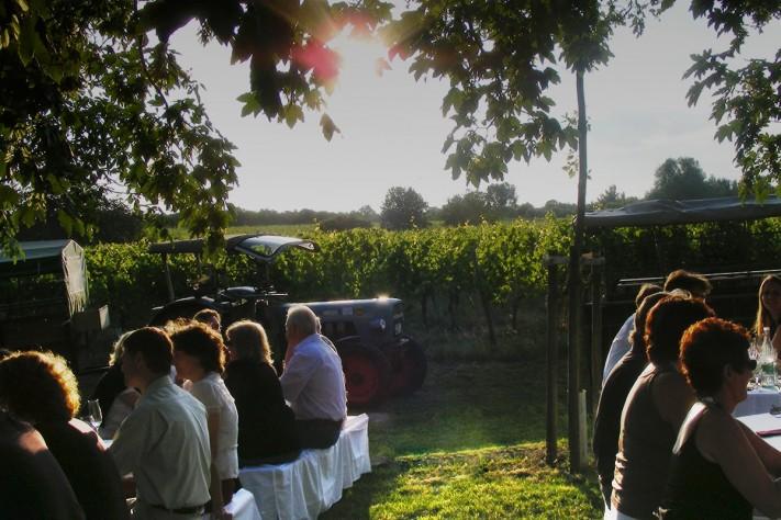 Weingut Domhof - Picknick