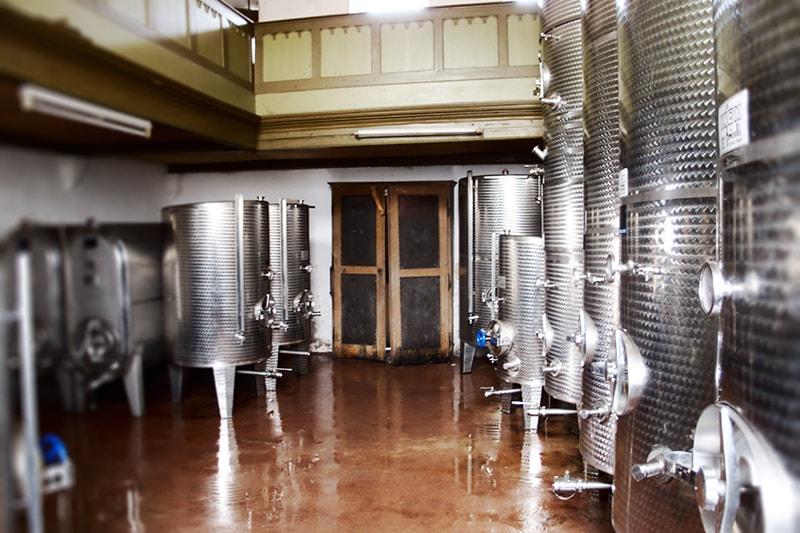 Weingut Domhof - Weinkeller